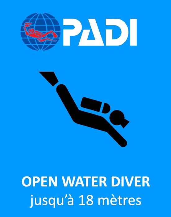 Open Water PADI avec Bellevue Plongée